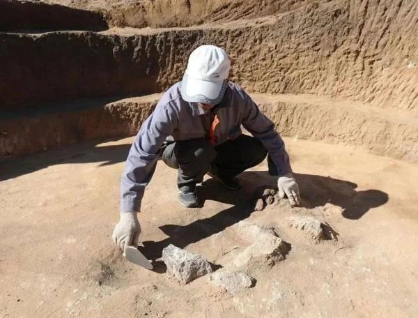 重大发现!内蒙古发现距今8400—7600年的遗址
