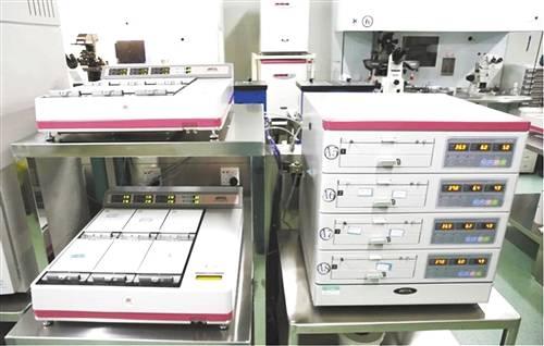 mg4355vip平台入口:探索智能胚胎实验室