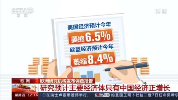 欧洲研究机构:据估计 主要经济体中只有中国经济在增长