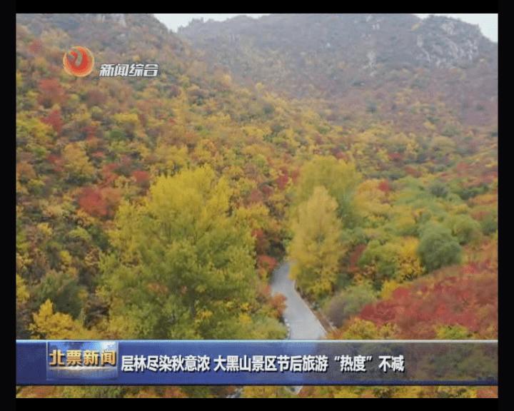 北票大黑山,一片秋意盎然的森林。