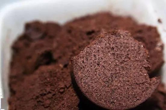 咖啡渣是属于什么类别的垃圾?英国人这么说... 防坑必看 第3张