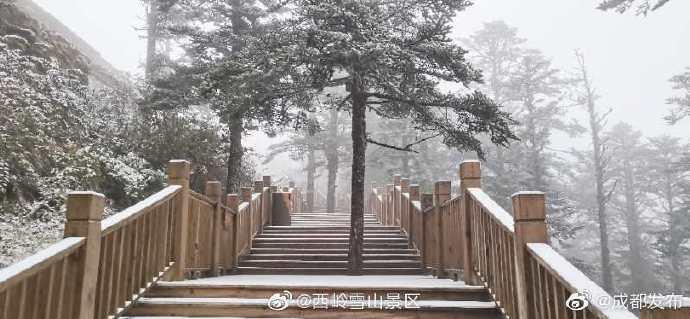 成都2020年第一场雪下啦!西岭雪山下雪啦