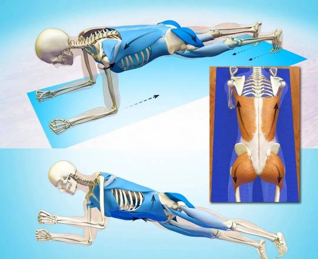 12个瑜伽动作,拉伸&强化上中下背部,帮你打造迷人美背!(收藏级)