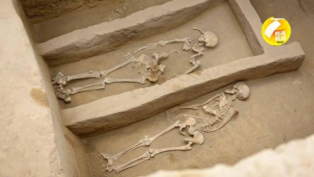 陕西寨山遗址发现多处活人殉葬墓 活人殉葬最早开始于哪个朝代