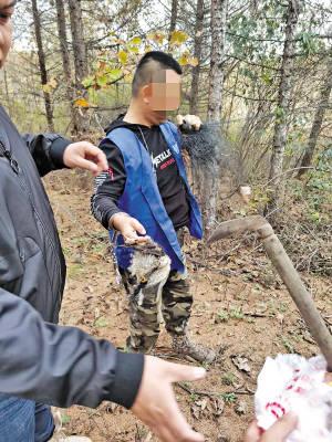 男子网捕84只野生鸟被刑拘