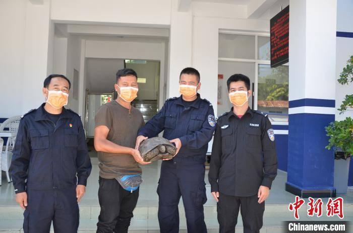 """云南德宏:民警成功救助受伤""""大乌龟"""" 原是国家二级保护动物"""