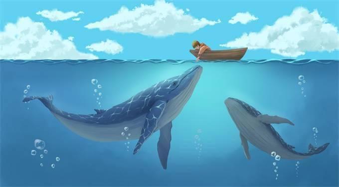 """""""雷达""""失灵?上百头鲸鱼在斯里兰卡搁浅 通宵营救下及时返回大海"""