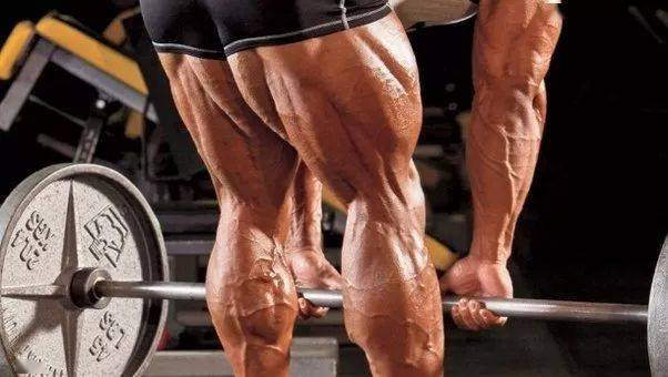 克服腿训恐惧,如何进行一次高效的腿部训练?