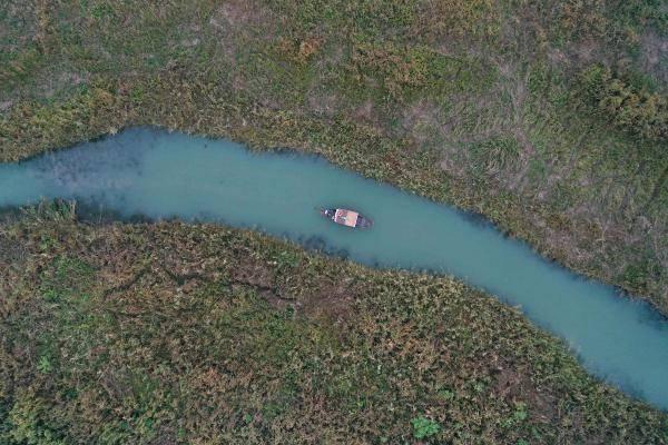 杭州:西溪湿地赏芦花