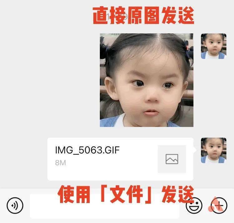 微信终于能发不压缩的照片和视频了!这个新功能,iOS 抢先体验