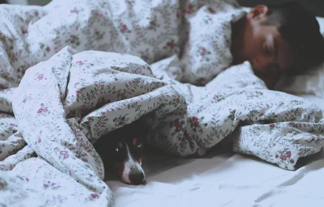 10个方法提升睡眠质量,40万人研究证实:深度睡眠长的人,寿命更长