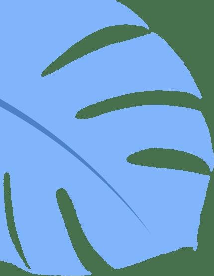 【香草视频最新版】 经济治理学院丨2020届结业生结业去哪儿了