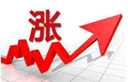 今日猪价最新猪消息一览 12月29日生猪价格多少钱一斤