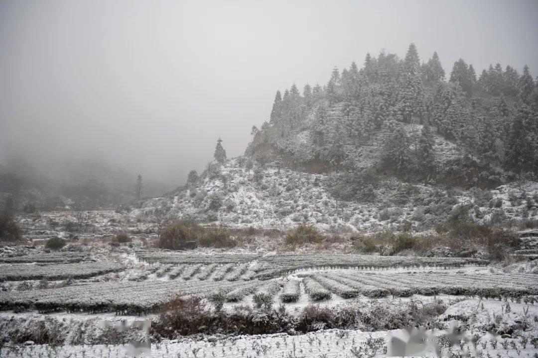 福建又下雪了!很多地方都有雾霾,明天后天就
