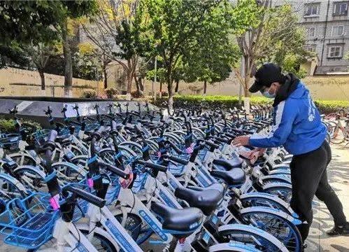 注意!@昆明人 乱停乱放乱骑共享单车,禁骑半年……