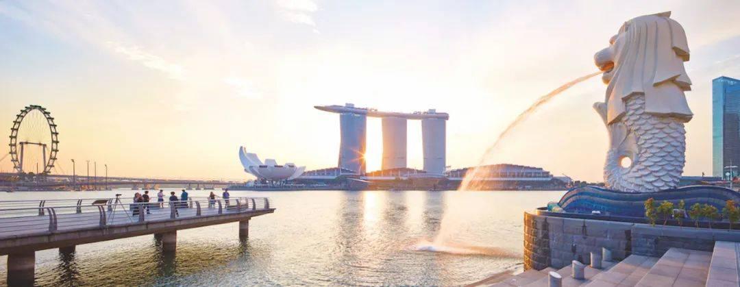 """新加坡最冷知识!""""大榴莲""""竟掌控风水命运,李嘉诚都不得不服~"""