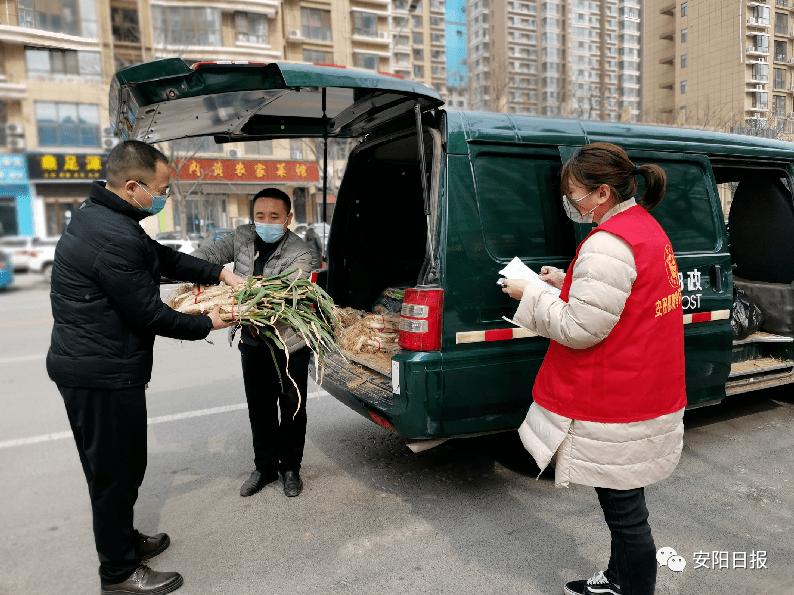 扶贫印记丨安阳县 (示范区):合力奏响致富曲 并肩踏上小康路