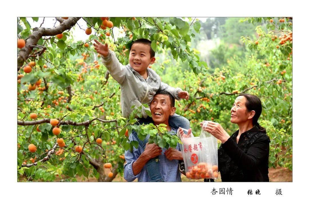 【展扶贫成效】沁水县:脱贫攻坚 奋进小康——摄影展  第10张
