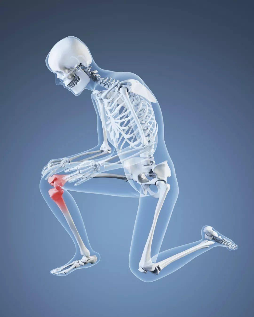 话说练瑜伽时,膝盖到底能不能超过脚尖?