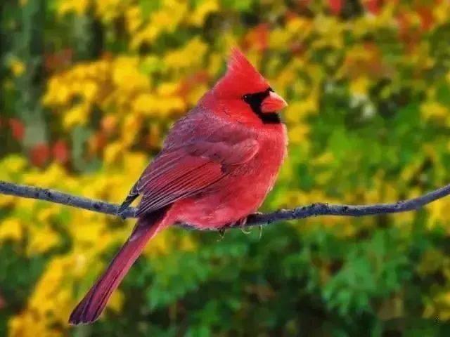 幸福生活三字箴言,照着做,健康幸福找上门,值得一看!