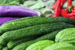 買黃瓜時,選直的還是彎的好?多虧老菜農提醒,再也不瞎買了