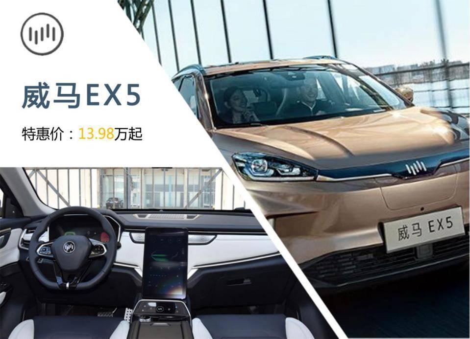 """新能源汽车团购""""惠"""",最高直降10万元"""