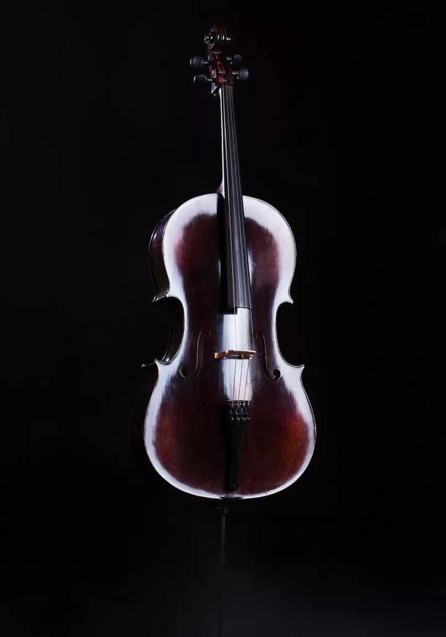 学小提琴烧钱吗(一把小提琴为什么这么贵)插图(2)