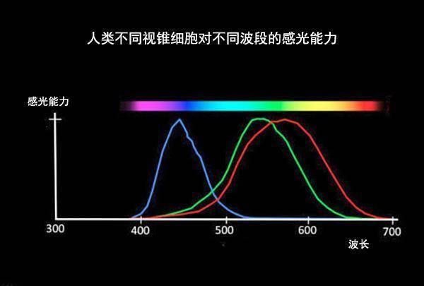 颜色有多少种(人类还能够发现新的颜色吗)插图(7)