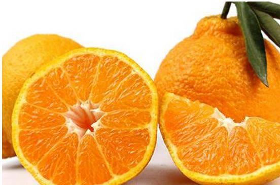 丑橘吃多了会怎样(丑橘真的吃了不上火吗)插图(2)