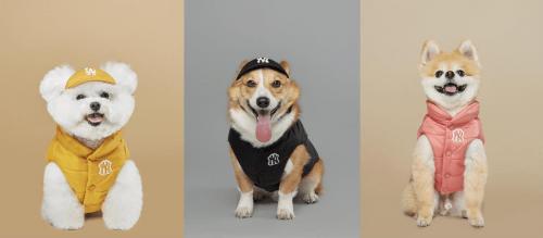 潮宠出街 特有看头MLB 推出全新PET秋冬限量潮宠服饰系列