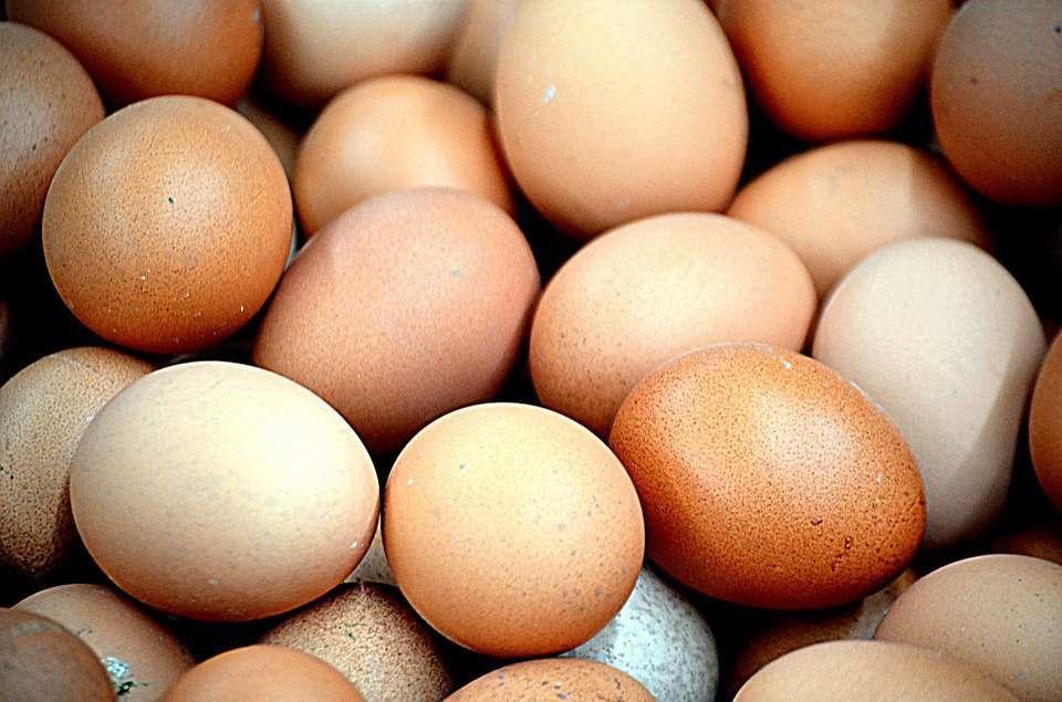 鸡蛋红皮的好还是白皮好?医生一次给你讲清楚,以后别瞎买了