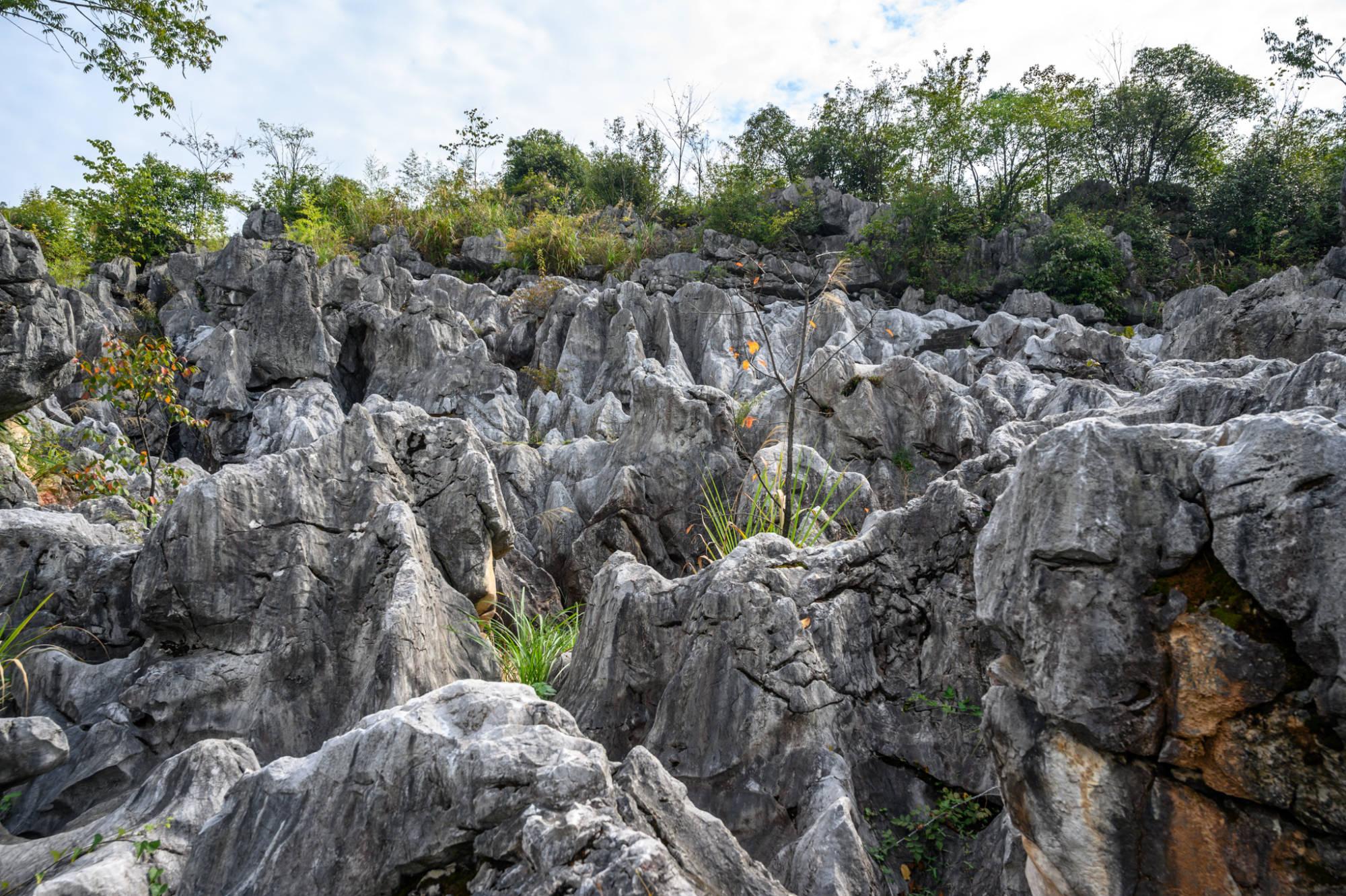 杭州千岛湖不仅有秀水,还有一片奇特的石林,景色可媲美云南石林