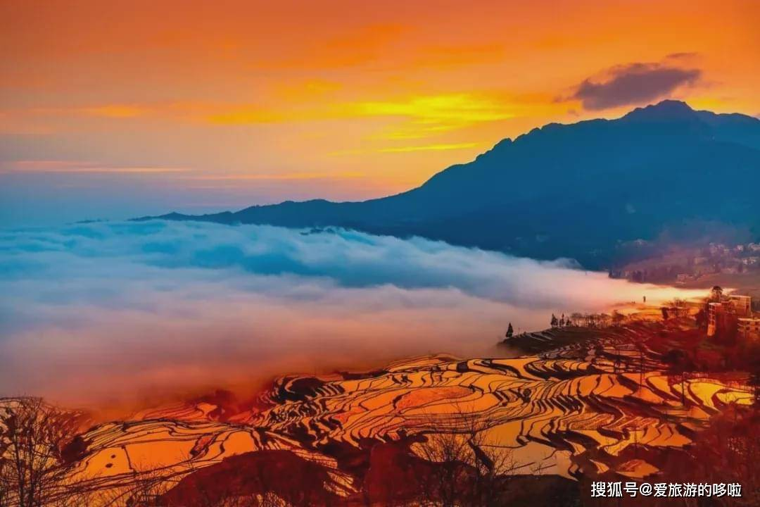 2021年了,我还是爱云南。