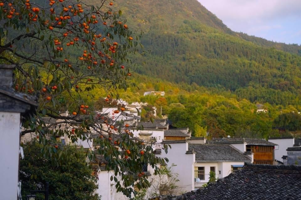 安徽旅游资源最丰富的三个县,2个在皖南1个在皖中,风景各有特色