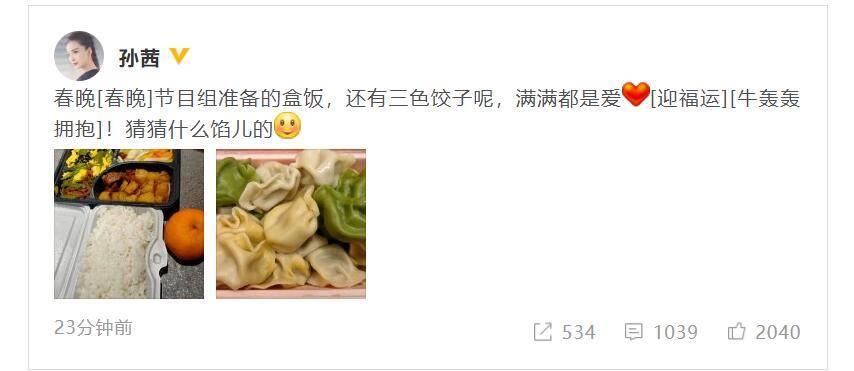 孙茜晒央视春晚盒饭 两荤两素还有三色饺子
