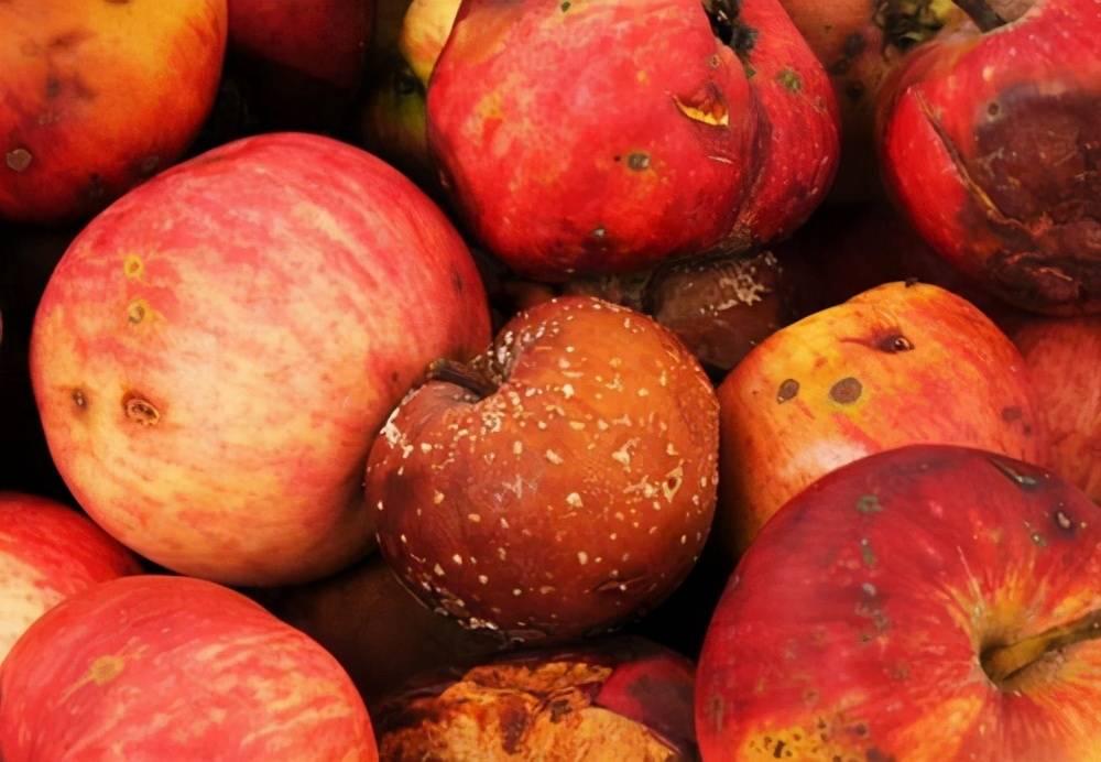 牛牛视频:医生提醒:这4种水果已被世卫组织拉黑,再美味也别碰,没开玩笑