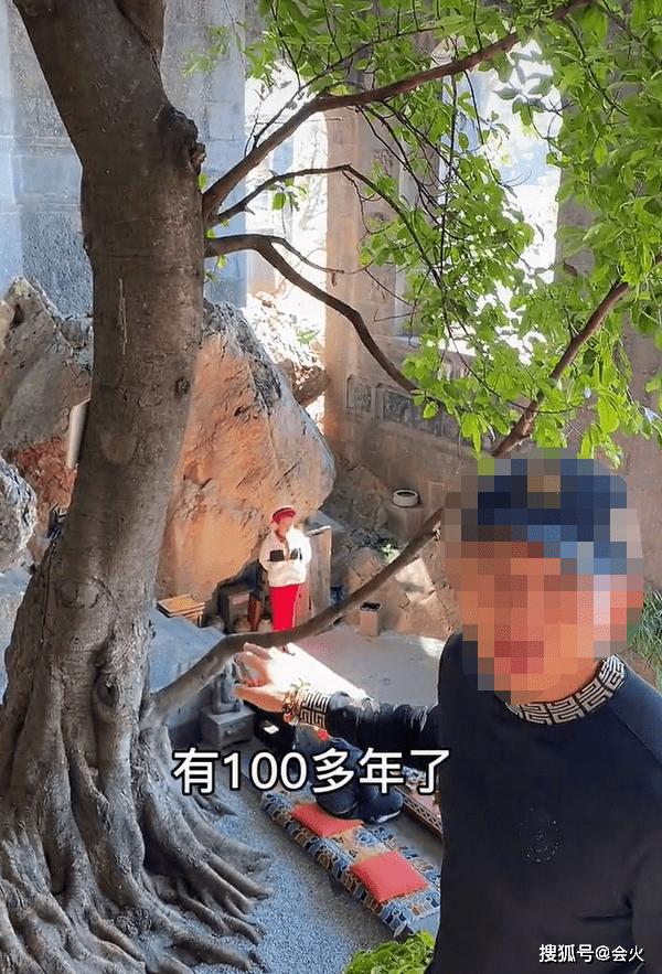 杨丽萍千万豪宅内景曝光!有一棵百年老树,一件旗袍售卖近三万元