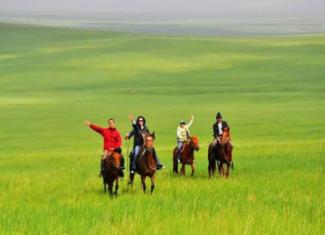 内蒙古丨一路向北野性传奇,向左沙漠向右草原!