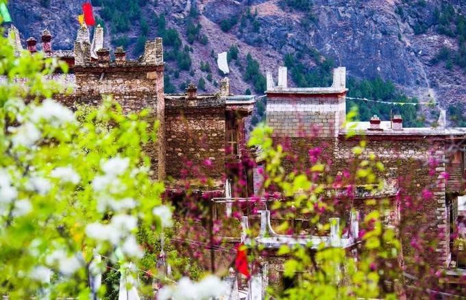 四川丹巴藏寨纯色, 一树梨花与碉楼绝配
