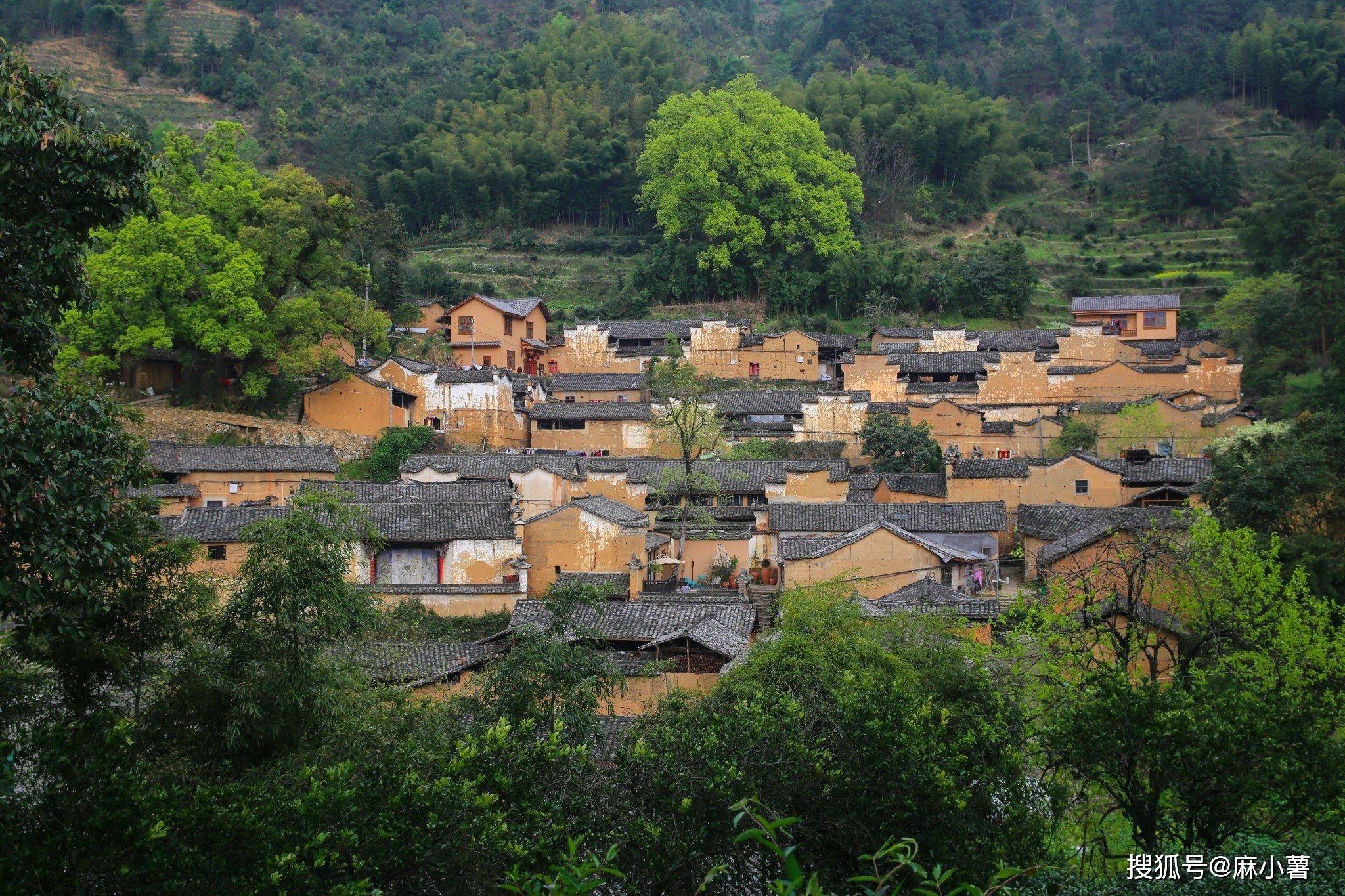 浙南藏了一座300年的古村,有金色布达拉宫之称,环境非常原生态