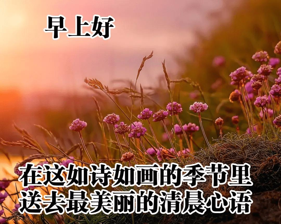 2020年大暑快乐的祝福语合集89句