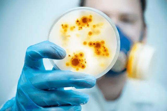 """想做硅胶马桶刷抗菌,就需要""""玩""""点别人不会的!"""