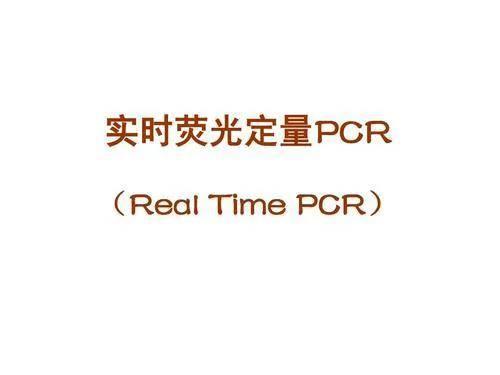 菲娱4主管-首页【1.1.9】