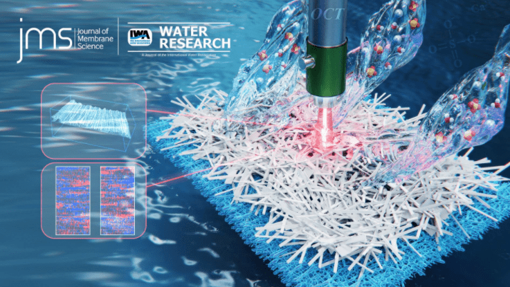 南科大李炜怡团队发表膜蒸馏系列研究成果