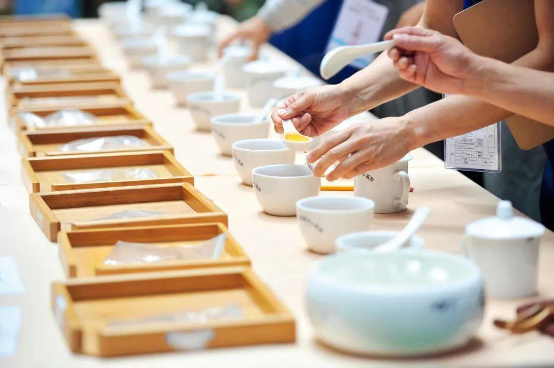 """""""一两黄金一两茶"""",谁炮制了几十万元1斤的天价茶?"""