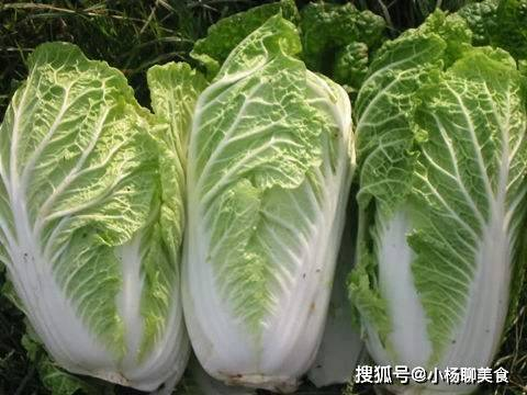 春天不减肥夏天徒伤悲,常食3种蔬菜,刮油清脂,美容养颜!
