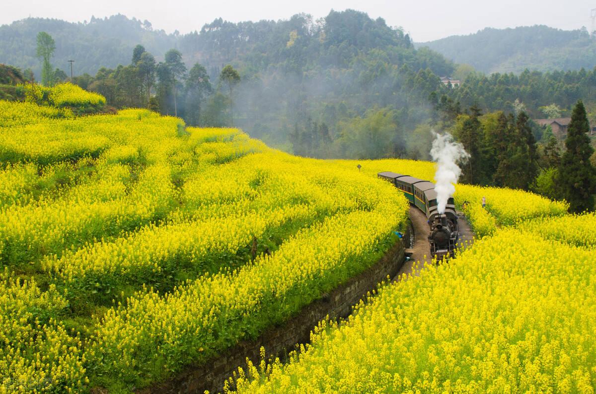 原创             四月最佳旅行地榜单,这10个地方藏着中国最美的春天