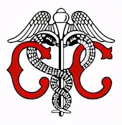 日本大学校徽背后的含义,你知道几个?