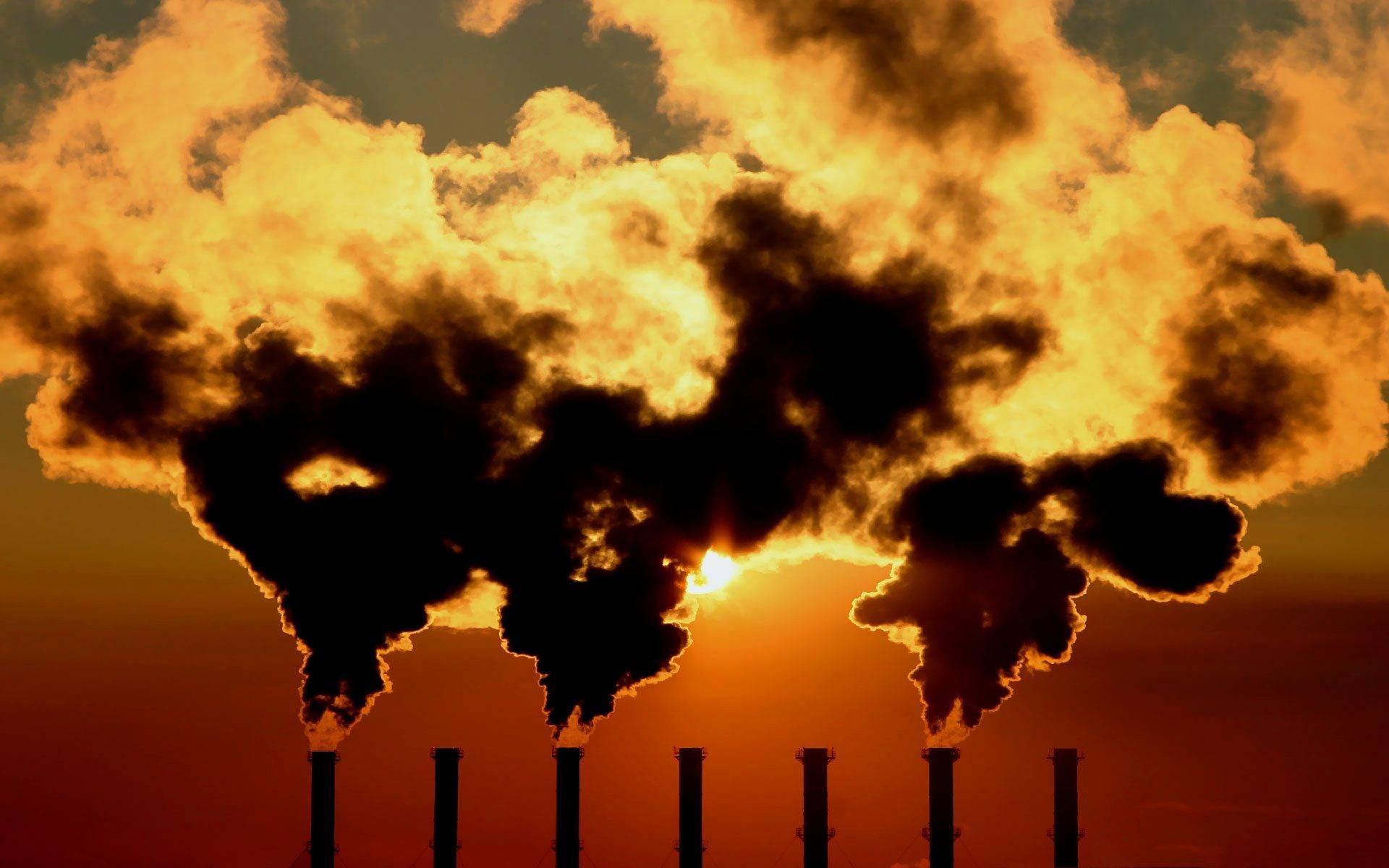 地球正进入第六次大灭绝时代?科学家:前所未有的危机或将到来  第10张