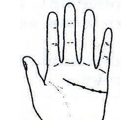"""秘传手相古相法精解:手相""""感情线""""、详细图文解析、值得收藏!  第41张"""